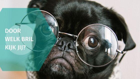 Door welke bril kijk jij?